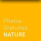 photos gratuites nature